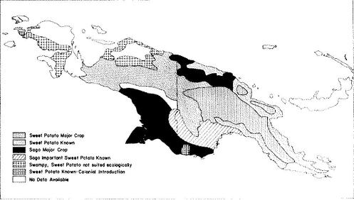 The distribution of sweet potato cultivation in New Guinea