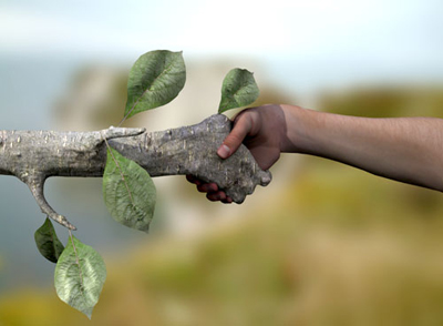 Hand-in-Hand with Our Environment